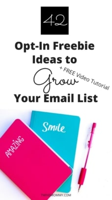 42 Freebie Ideas to Grow Your Email List as a New Blogger + Free Video Tutorial