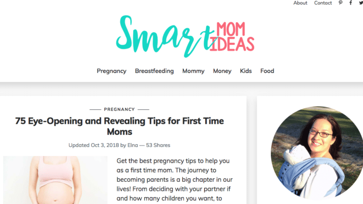 7 Successful Mom Blogs That Make Money - Twins Mommy